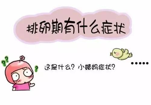 排卵期的症状有哪些?注意这几大表现